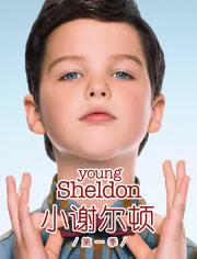 小谢尔顿第1季