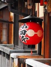 万门大学-日语初级课程