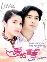 愛的宣言(2014)