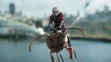 黃金周看電影:幾分鐘看完美國科幻電影《蟻人2:黃蜂女現身》